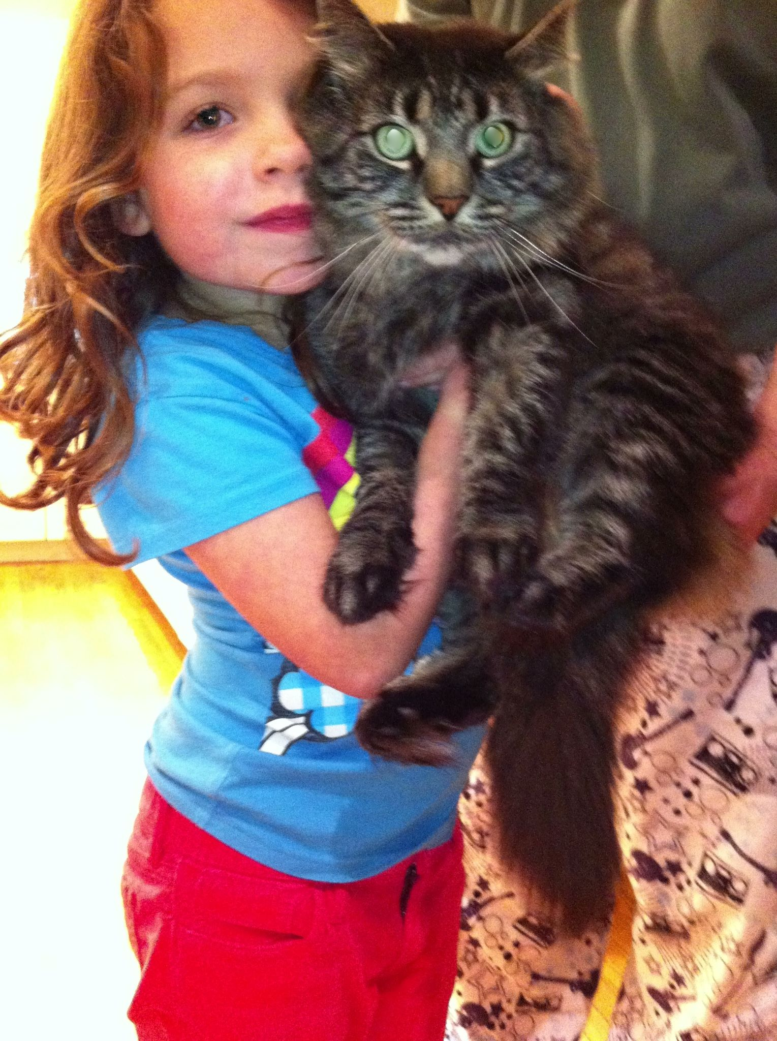 My daughter Lillian (the one on the left) with our resident Maine Coon, Teddy (the fur ball on the right)