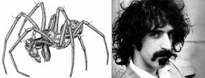 Pachygnatha zappa and Frank Zappa