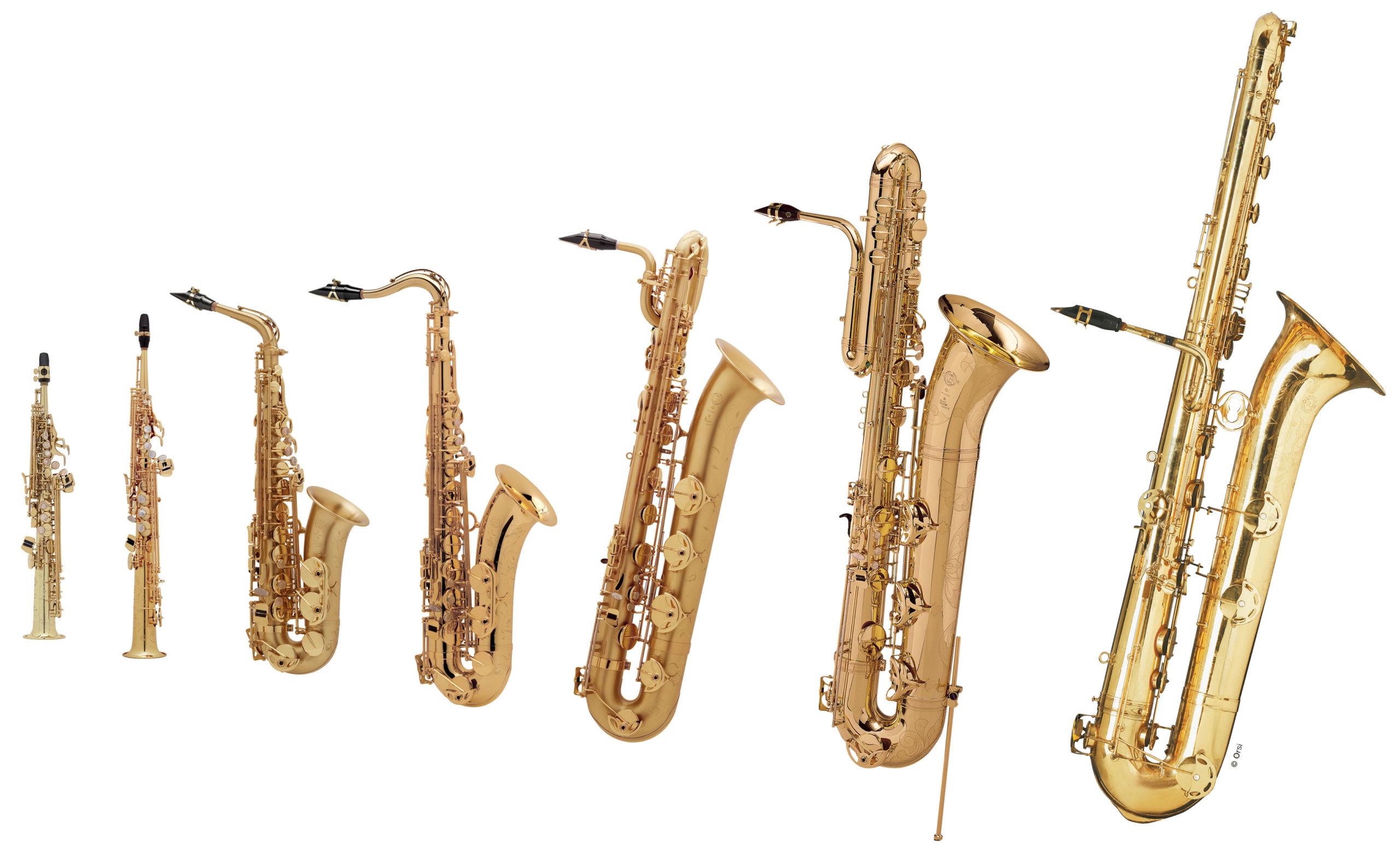 Left-to-right the sopranino, the soprano, the alto, the tenor, the baritone, the bass, and the double bass saxophones